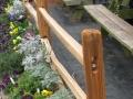 Annual Perennial Fence