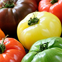 heirloom tomatow
