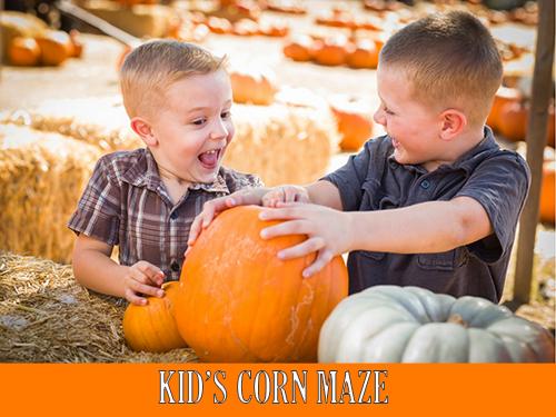 Kid's Corn Maze