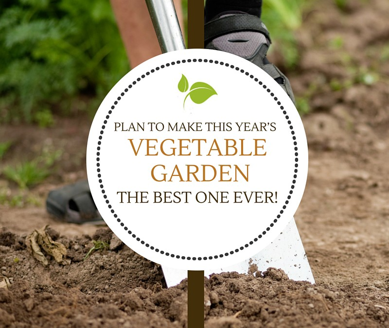 Plan to make this year's vegetable garden the best one ever!