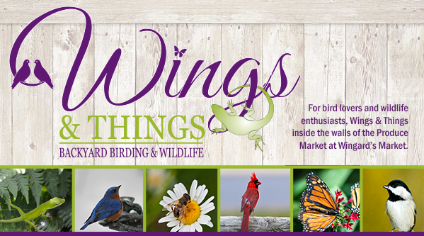 Wings & Things …Invite Wildlife to Your Backyard