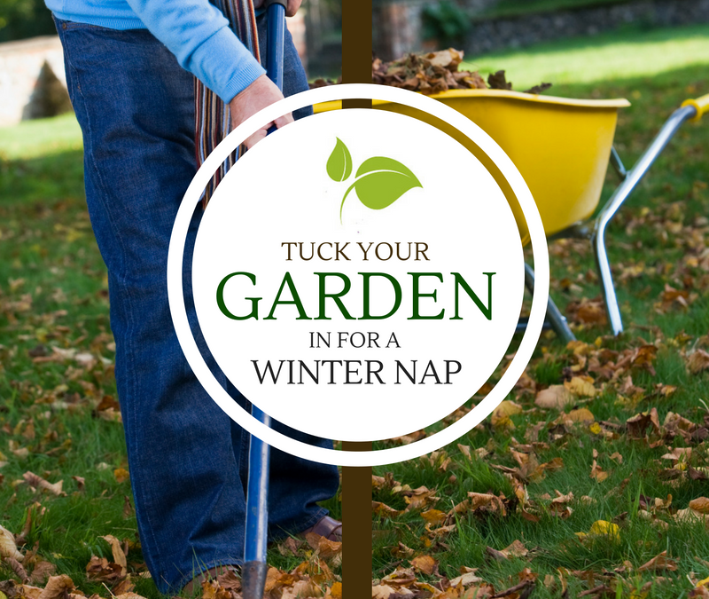 Tuck Your Garden in for a Winter Nap